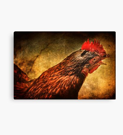 What the cluck? Canvas Print