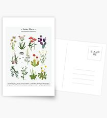 Canadian Prairie Botanicals Postcards