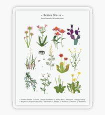Canadian Prairie Botanicals Transparent Sticker