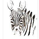 Geisterhaftes Zebra von Marlene Watson