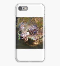 Cha Cha Cha Chia Snapping Turtle iPhone Case/Skin