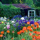 Garden Shed by Oscar Gutierrez