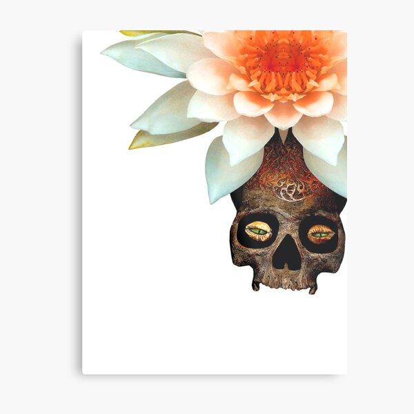 Greeneye Lily  Metal Print