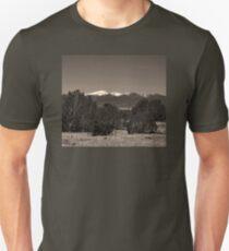 ANCIENT SPIRIT MOUNTAINS Unisex T-Shirt