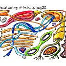 Internal workings of the human body XII by TrueInsightsNZ