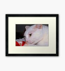 Playing with a ribbon Framed Print
