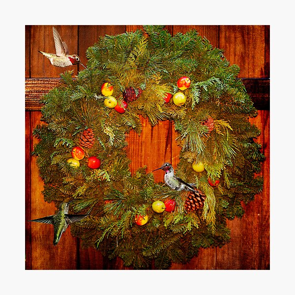 Happy Hummingbird Holidays Photographic Print