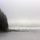 Fog over Dexter Lake by aussiedi