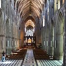 Worcester Cathedral Panorama by John Dalkin