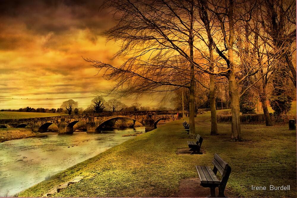 Edisford Bridge. by Irene  Burdell
