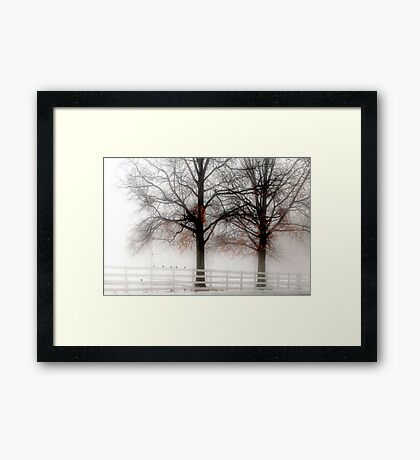The Way a Bird Rests on Its Perch Framed Print