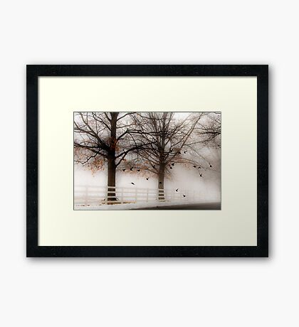 And Still the Birds Came Framed Print