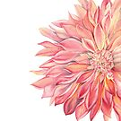 dahlia by youdesignme
