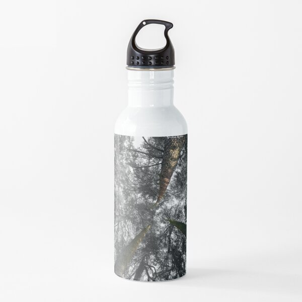 Lost in the Forest Water Bottle