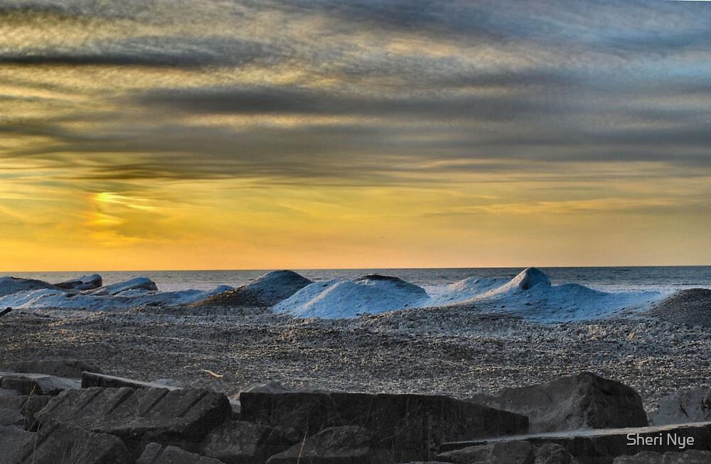 Lake Erie In January III by Sheri Nye