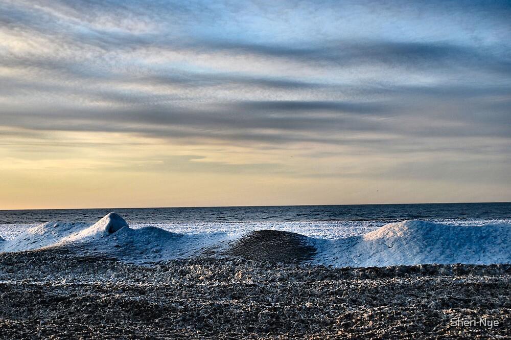 Lake Erie In January IV by Sheri Nye