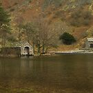 Boathouses at Wastwater by Steve plowman