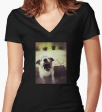 Angry Jack Russell Fitted V-Neck T-Shirt