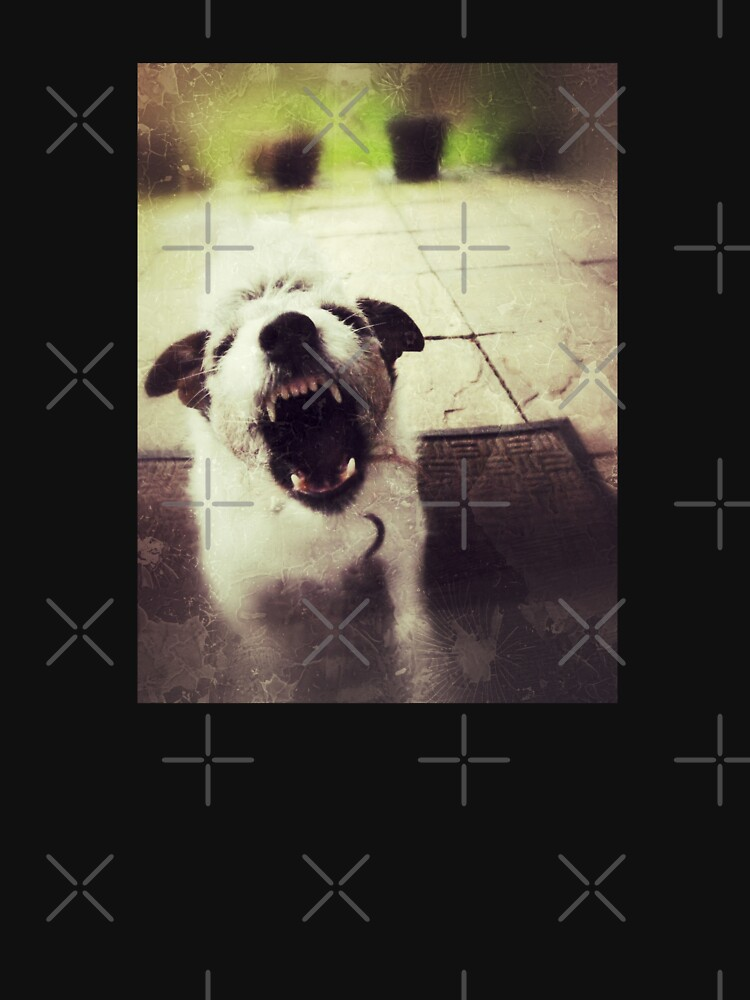 Angry Jack Russell by everyplate