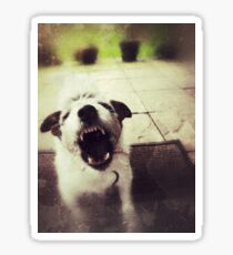 Angry Jack Russell Glossy Sticker