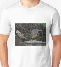 little green heron Unisex T-Shirt