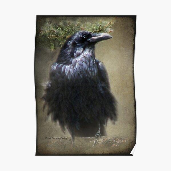 Raven Guard Poster