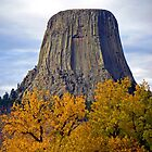 Devils Tower, Wyoming, USA by Margaret  Hyde