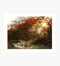 Autumn and Winter Art Print