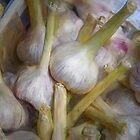 Cinque Terre Garlic Artistic by joancarroll