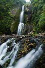 Kitekite Falls by Michael Treloar