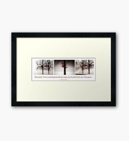 Winter Triptych Framed Print