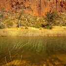 Cliffs above the Finke River by Kevin McGennan
