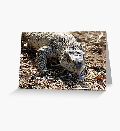 African Rock Monitor Greeting Card