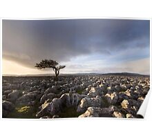 Wharfedale Isolation Poster