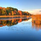 Fall Colours - Mer Bleue Bog - Boardwalk by Jean-Paul Fournier
