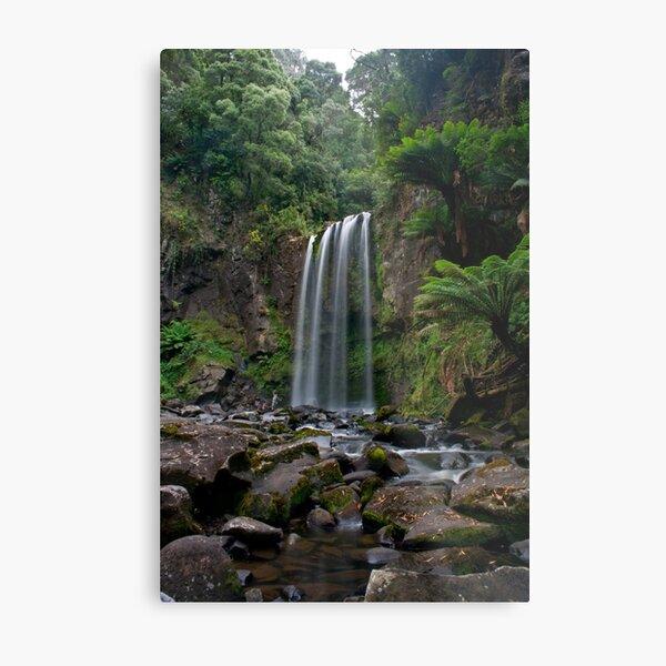 Hopetoun Falls - Otways National Park, Australia Metal Print