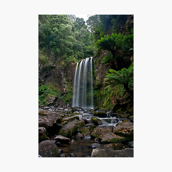 Hopetoun Falls - Otways National Park, Australia Photographic Print