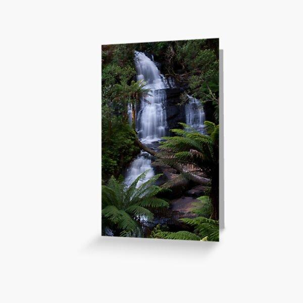 Triplet Falls - Otways National Park, Australia Greeting Card