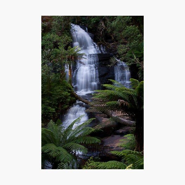 Triplet Falls - Otways National Park, Australia Photographic Print