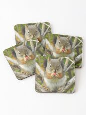 Adorable Mountain Ash Berry Squirrel Coasters