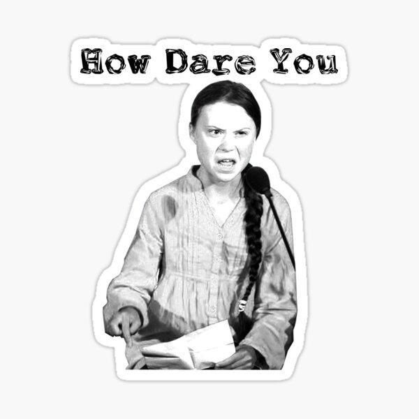 Greta Thunberg   Wie kannst du es wagen? Sticker