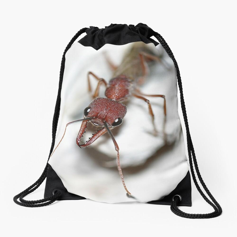 Australian Ant Drawstring Bag