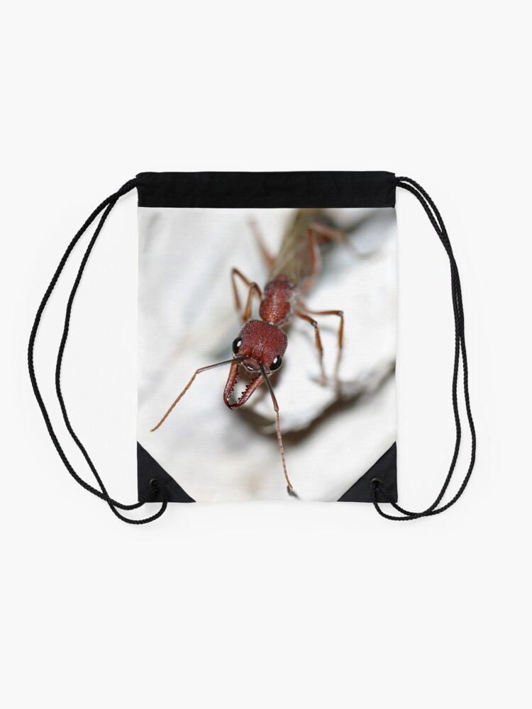 Alternate view of Australian Ant Drawstring Bag