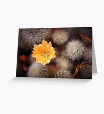 Prickle Queen Greeting Card
