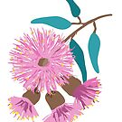 Australian Pink Gum Blossom by thatsgraphic