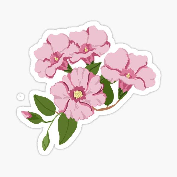 Australian Sturts Desert Rose Sticker