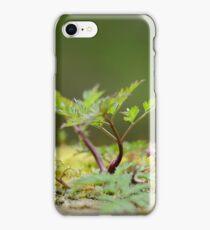 Miniatur Landscape iPhone Case/Skin