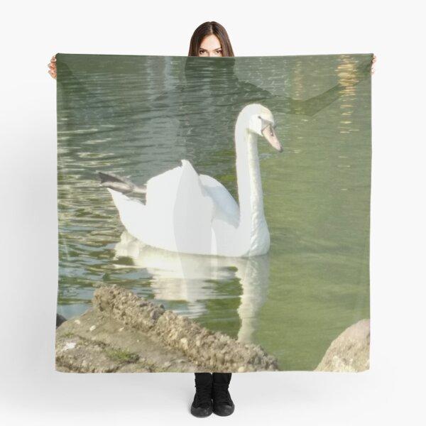Merch #49 -- Swan - Shot 7 (Pearson Park) Scarf