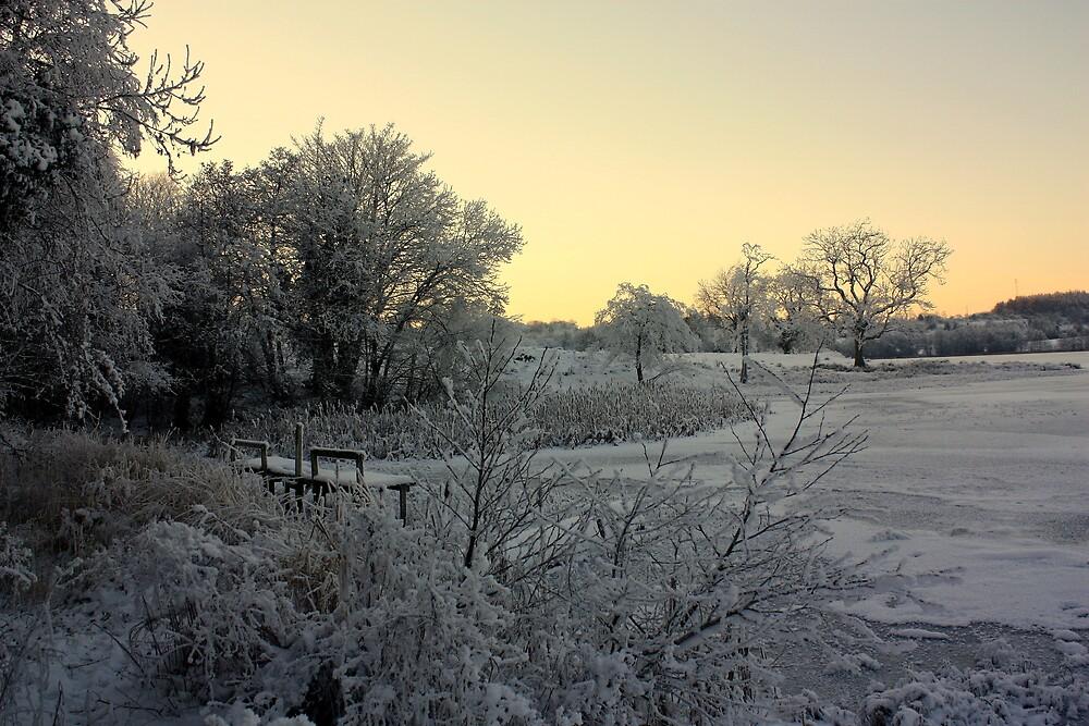Town Lake - Frozen  by Julesrules