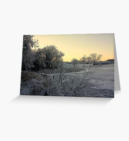 Town Lake - Frozen  Greeting Card